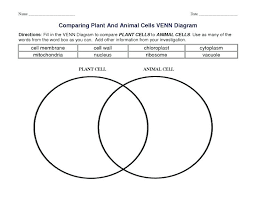 Venn Diagram On Plant And Animal Cells Plant Cell Vs Animal Cell Worksheets