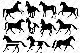 Find & download free graphic resources for horse. Free Horses Svg Files For Silhouette Cameo And Cricut Di 2020