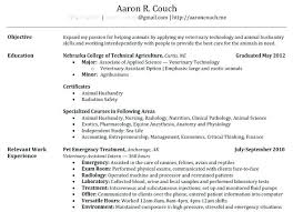 My Perfect Resume Phone Number 13 Full Image For Cv Telephone Your