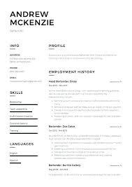 Bartending Resume Template Impressive Sample Bartending Resume Bartender Resume Examples Bartender Resume