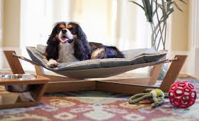 dog bed ideas. Modren Dog Bamboo Hammock Dog Bed Throughout Ideas S