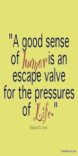 Sense Of Humor Quotes Fascinating Quotes About No Sense Of Humor 48 Quotes
