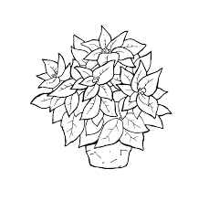 Poinsetta Coloring Pages Interesting Coloring Pages Inside Crash