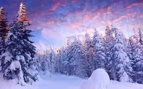 2560x1600 px, landscape, snow, trees ...