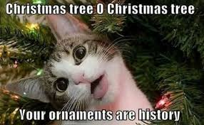 Kuvahaun tulos haulle quotes about x- mas with dogs and cats funny
