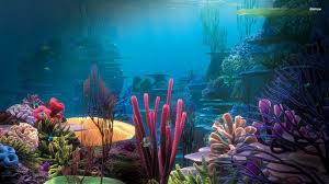 65 Fish Tank Wallpapers On Wallpaperplay