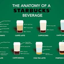 Your Favorite Starbucks Drinks Dissected Starbucks Drinks