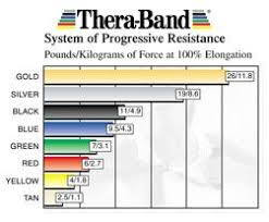 Thera Band Stability Trainers Gym Workouts Band Chart