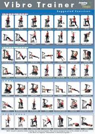 Power Plate Wall Chart Vibration Plate Exercises The Basics A Fitness Fighters