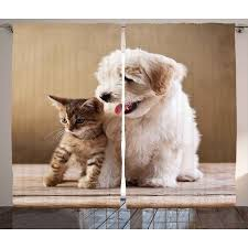 cute puppy and kitten best friends. Delighful Cute Animal Curtains 2 Panels Set Cute Baby Cat Kitten And Puppy Dog Best  Friends Image To And E