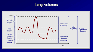 Lung Capacity Test Chart Pulmonary Function Tests Pft Lesson 1 An Introduction