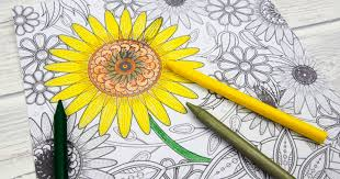 Sunflower coloring pages remind me of the end of summer and the beginning of fall. Sunflower Colouring Page Mum In The Madhouse