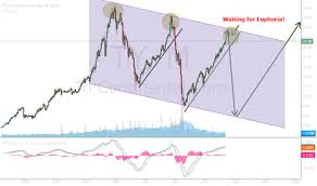 Peter Lynch Chart Ty Stock Price And Chart Nyse Ty Tradingview