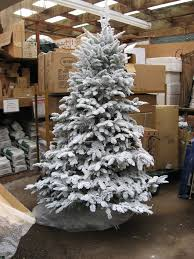 Flocked Christmas Tree Where To Buy Flocked Christmas Trees Home Design Inspirations