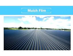 landscaping plastic sheeting black landscape garden weed control gorgeous weeds in vegetable kill