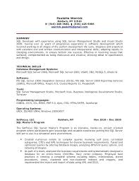 Sql Experience Resume Sample Best Of Oracle Pl Sql Developer Resume Sample Good Looking Pretentious Pl