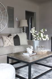 Living Room Dining Room Paint 25 Best Ideas About Condo Living Room On Pinterest Condo