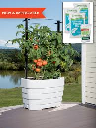 garden kit. classic tomato garden kit in white on deck with plants, inset detail of soil
