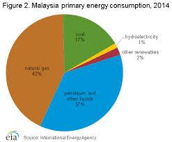 Malaysia International Analysis U S Energy