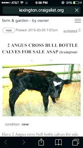 craigslist san antonio farm and garden by owner farm and garden farm garden farm garden farm