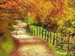 Free Desktop Wallpaper Autumn Scenery ...