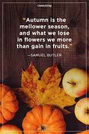 Autumn Quotes Delectable 48 Fall Season Quotes Best Sayings About Autumn