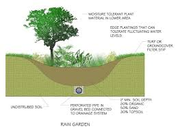 Small Picture The 164 best images about Rain Gardens on Pinterest Gardens