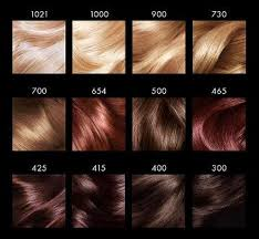 Well Hair Color Chart Loreal Preference Mousse Hair Colour Chart Trying 415