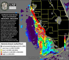 Florida Gulf Coast Red Tide Stifles Tourism And Vacation