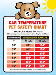 Car Temperature Safety Guide Sticker Made In The Usa