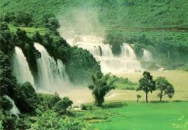 لكل محبي صور الطبيعة  اكبر تجميع لصور الطبيعة Images?q=tbn:ANd9GcSlGf0Oc50HHn6z5FM2vOcMKLi8ZKdKcIgbJOLVSjQ6LMrPyJighA