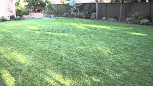 Small Picture How to Landscape a Big Backyard Landscaping Garden Design