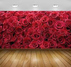 Buy Avikalp Awi3268 Red Roses Flowers ...