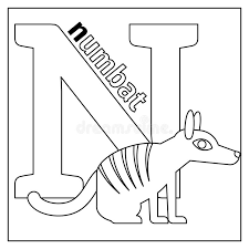 Small Picture Numbat Letter N Coloring Page Stock Vector Image 79427656