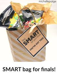 mice paige college finals smart gift bag care package filled with smart