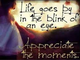 Life Journey Quotes Magnificent 48 Great Quotes For Your Journey In Life