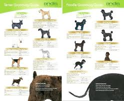 Andis Grooming Chart Andis Dog Clipper Blade Chart Achievelive Co