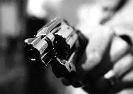 Resultado de imagem para ilustrativa para arma de fogo