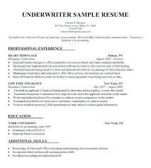 Sarmsoft Resume Builder Resumes Free Resume Builder No Registration Cv Mmventures Co