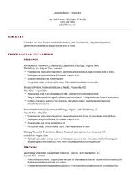 Example Of A Good Chronological Resume Classy 48 Basic Resume Templates