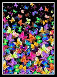 Butterfly wallpaper, Nature wallpaper ...