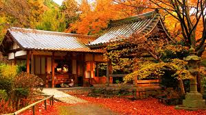Free download Autumn Color In Japan ...