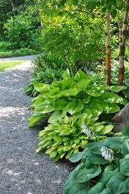 Small Picture 1334 best In My Garden images on Pinterest Hydrangeas Garden
