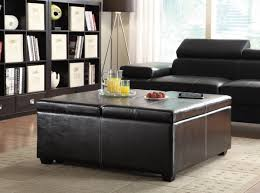 Image of: Large Storage Ottoman Coffee Table