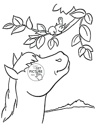 Cute Seal Coloring Pages At Getdrawingscom Free For Personal Use