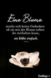 Pin Von Sabine Schulze Auf Das Leben Inspirational Quotes Do
