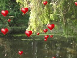 Resultado de imagen de corazon pequeño vibrando