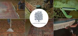 welcome to larson rug cleaning of jacksonville fl