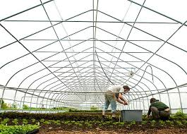 what is organic farming definition features benefits  organic farming using organic waste