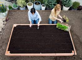 do it yourself raised garden beds. The Perfect Raised Bed Do It Yourself Garden Beds